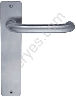 Door Handle with Plate